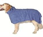 Hunde kan godt have brug for tøj (foto lavprisdyrehandel.dk)