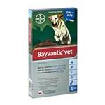 Køb Bayvantic til din hund og slip for lopper og flåter (foto: petworld.dk)